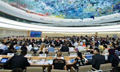 BM İnsan Hakları Konseyi'ne 14 yeni üye seçildi
