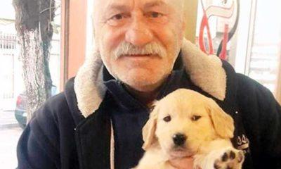 Ünlü oyuncu Ali Erkazan köpeğinin katilini arıyor