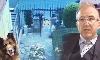 Nero'yü öldüren Alp Erkin'in, evine Gabon Fahri Konsolosluğu tabelası astığı ortaya çıktı