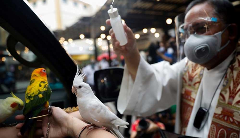 'Corona' nedeniyle arabalı hayvan kutsama: Camdan çıkardıkları kafalarına kutsal su serpildi