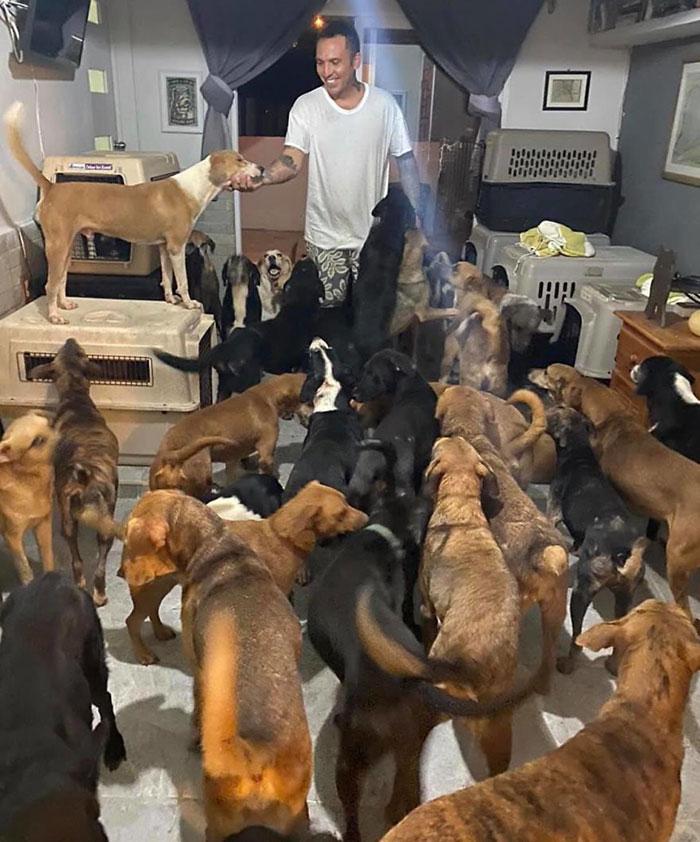 Kasırgadan korumak için 300 köpek, onlarca kedi, tavuk ve koyunu evine aldı