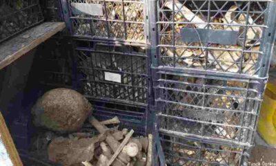 """Tekirdağ Valiliği'nden """"şehitlikteki kemikler zarar görmedi"""" açıklaması"""