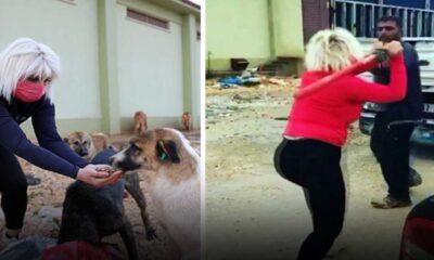 Köpeklerin mamalarını çalan kişiyi beyzbol sopasıyla döven kadın konuştu