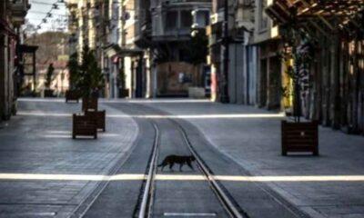 İstanbul Valiliği'nden açıklama! İşte 17 Mayıs-1 Haziran'da uygulanacak kademeli normalleşme tedbirleri