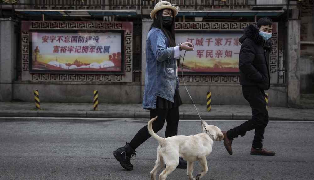 'Üç kez ihlal edenlerin köpeği öldürülecek'