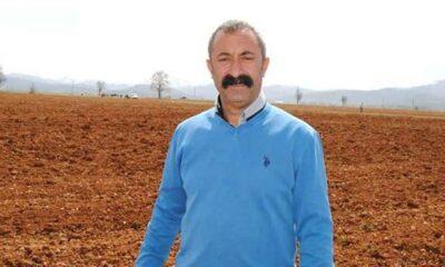 Fatih Mehmet Maçoğlu sert çıktı: Seni orada bekliyor olacağım!