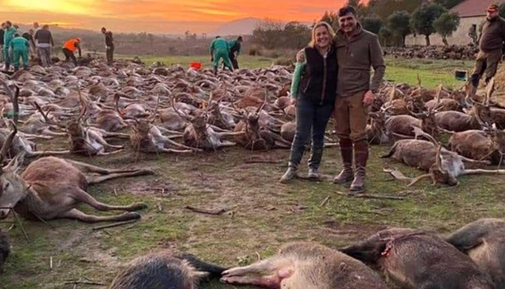 İspanyol avcılardan Portekiz'de 'hayvan katliamı': 540 yabani hayvan iki günde öldürüldü