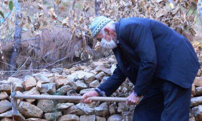 Mardinli Şeyhmus Amca, kendi çabasıyla orman oluşturdu