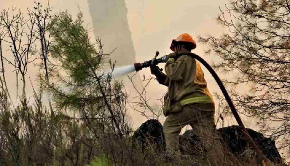 Muğla'da bu sene 813 hektar orman yandı