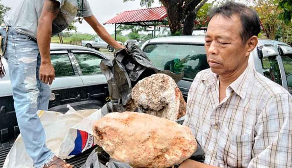 Tayland'da bir balıkçı 2,4 milyon pound değerinde ambergris buldu