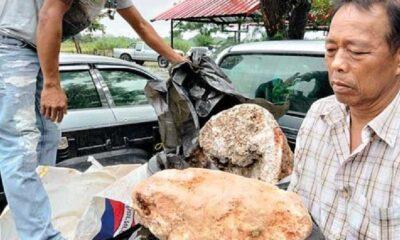 Taylandlı balıkçı buldu! Değeri tam 25 milyon TL