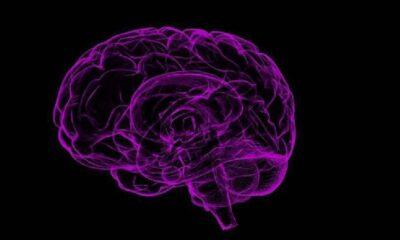 Yalnızlık beynin hayal gücüyle ilgili kısmını geliştiriyor