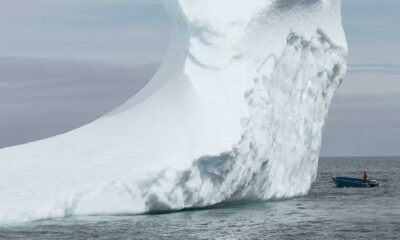 """""""Dünya yeni bir buz çağı tehdidiyle karşı karşıya"""""""