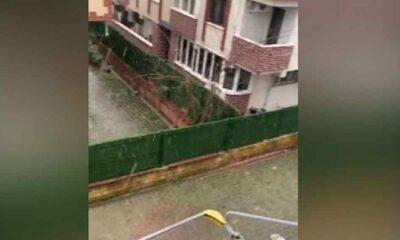 İstanbul'da yılın ilk yağışı gerçekleşti