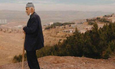 Mardin'de 11 bin ağaç diken 'Şeyhmus Amca'nın hikayesi