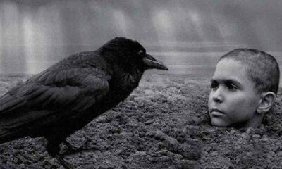 SİYAD, 'Boyalı Kuş'u 2020'nin en iyi yabancı filmi seçti