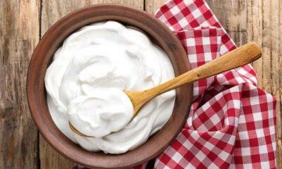 Yoğurdun faydaları nelerdir? Yoğurdun besin değerleri ve vücuda yararları