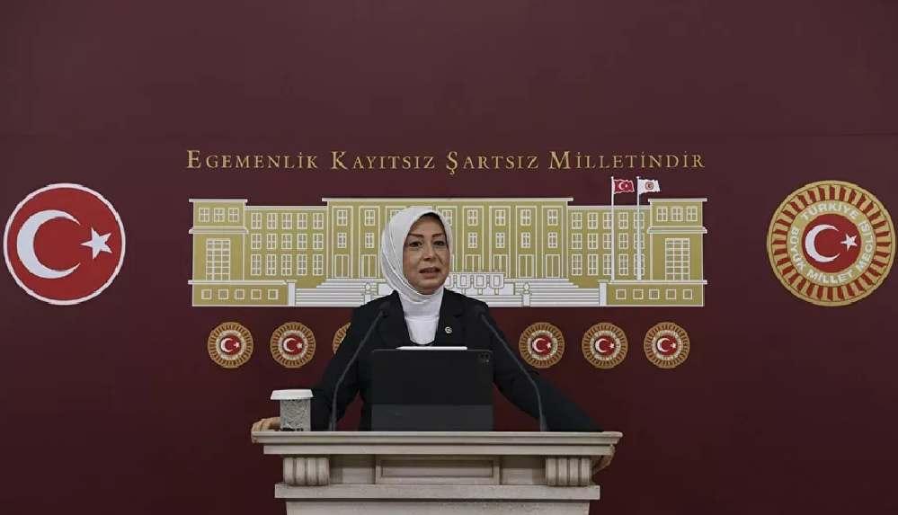 AK Partili Çalık, Pervin Buldan ile yaptığı görüşmeyi anlattı: 'Kim kaçırmış bakalım size döneceğim'