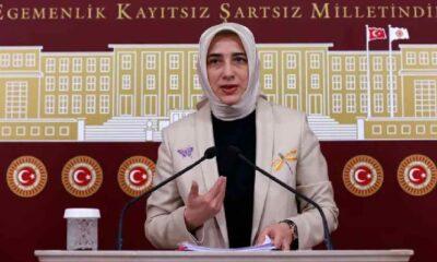 Ak Partili Özlem Zengin: Ne siyasal İslam'ı biliyorlar, ne bizi tanıyorlar