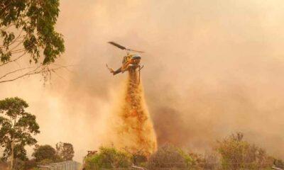 Avustralya'da orman yangınında binlerce kişiden evlerini terk etmesi istendi