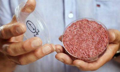 Bill Gates: Zengin ülkeler yalnızca sentetik et yesin