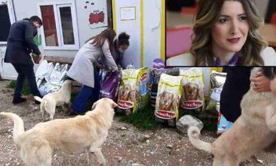 'Camide Çav Bella' hakaretleri sokak hayvanlarına mama oldu