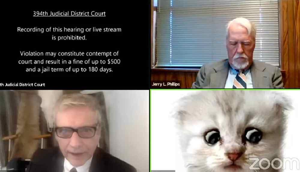 Duruşmaya 'kedi olarak' katıldı, kedi olmadığına 'inandırmaya çalıştı'