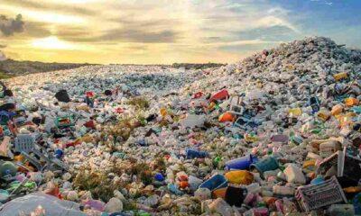 İngiltere'nin çöpünün yarısını Türkiye ithal ediyor