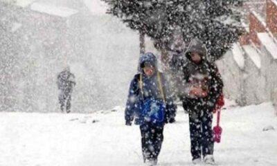 Kar nedeniyle 2 ilde daha yüz yüze eğitime ara verildi