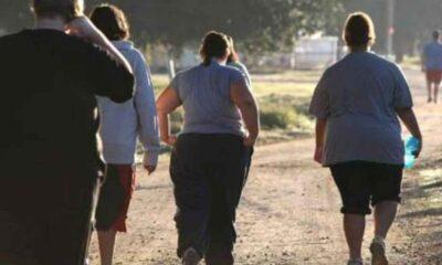 Obezite sorunu olan kişilerin beyinlerinin farklı çalıştığı ortaya çıktı