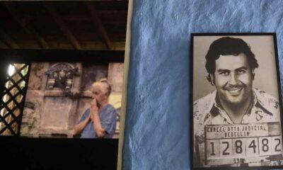 """""""Pablo Escobar'ın su aygırları yok edilmeli"""""""