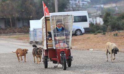 Üç tekerlekli bisikletiyle sokak hayvanlarının karnını doyuruyor
