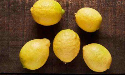 Limon ile lime arasındaki fark nedir?