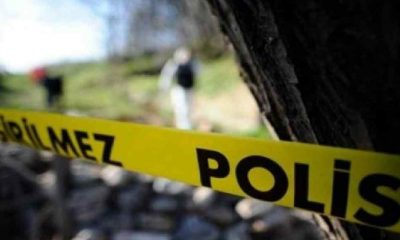 Ormanlık alanda bir kadına ait kafatası ve kaburga bulundu