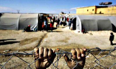 Türkiye'deki her 4 Suriyeli mülteciden 3'ü travma sonrası stres bozukluğundan mustarip