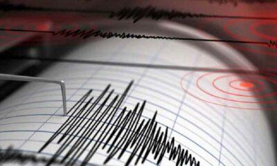 Yeni Zelanda açıklarında 7.3'lük deprem!