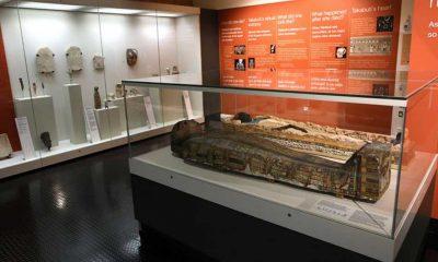 Bilim insanları ortaya koydu: 2600 yıllık Takabuti cinayeti aydınlandı