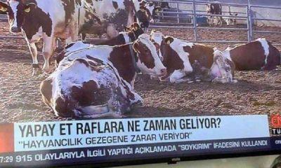 CNN Türk'ün 'yapay et' haberine büyük tepki