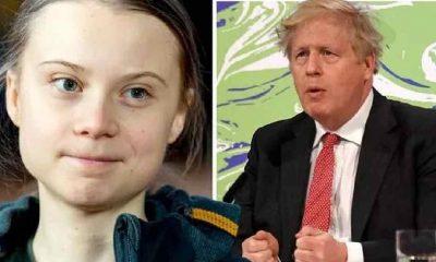 Greta Thunberg'den Boris Johnson'a 'tavşanlı' gönderme