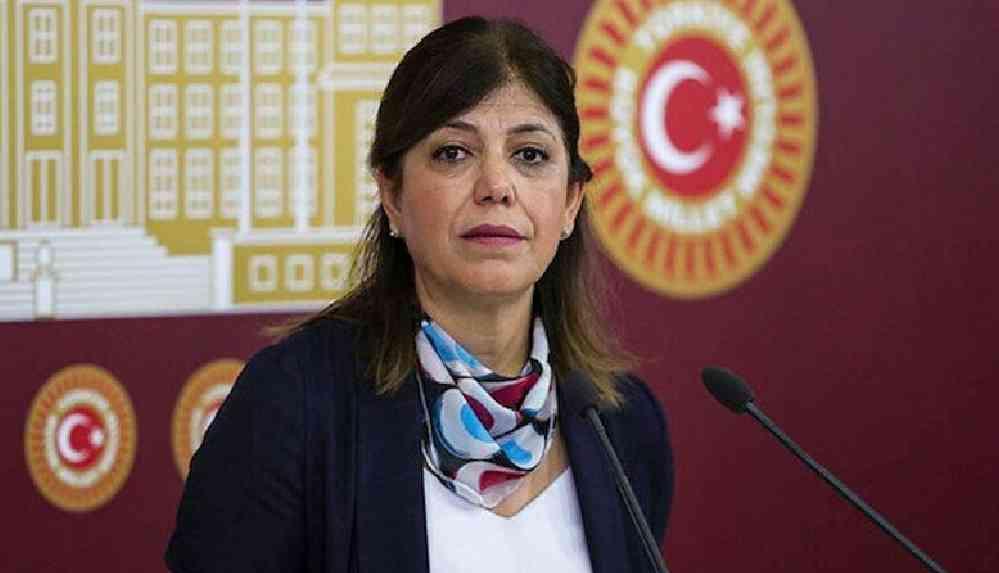 HDP'li Beştaş: Şu an milletvekilleri için güvenlik soruşturması olsa, iktidar grubunun yüzde 90'ı milletvekili olamaz