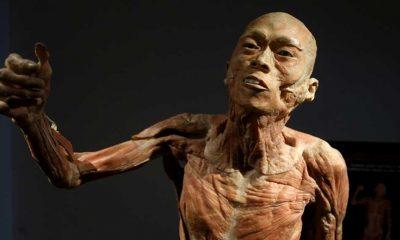 Hırvatistan'da insan vücudunun işleyişini anlatan sergi gerçekliğiyle görenlerin ilgisini çekiyor