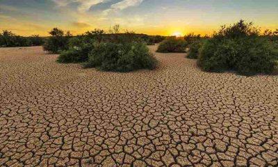 İklim krizi Türkiye'nin ekonomisini yüzde 10.3 küçültecek