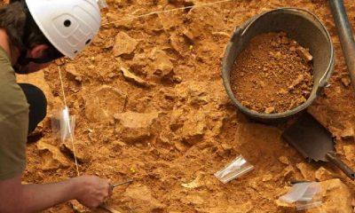 Yamyamlığa kurban giden 800 bin yıllık insan kalıntısının cinsiyeti yeniden saptandı