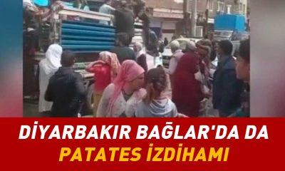 Bir patates izdihamı da Diyarbakır Bağlar'dan