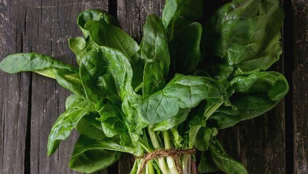 Yaz sebzeleri nelerdir? Yazın mutlaka tüketilmesi gereken vitamin deposu 5 sebze