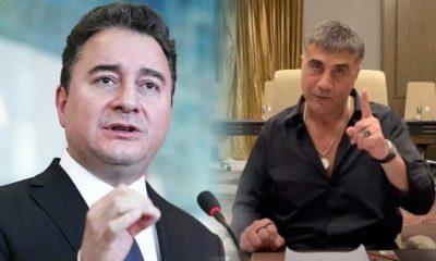 Ali Babacan'dan 'deve kuşu' paylaşımı: Orada kimse var mı?