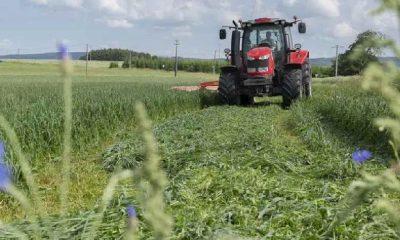 Belçikalı çiftçi, yanlışlıkla ülkesinin Fransa sınırını değiştirdi
