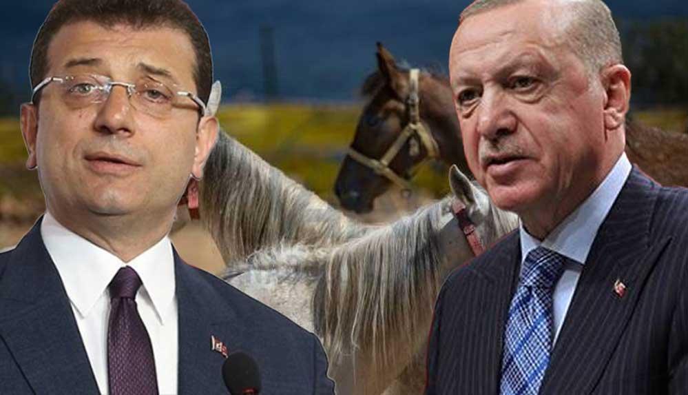 CHP'den, Erdoğan'a 'kayıp atlar' yanıtı: Yalana başvuracak kadar acziyete düşmüştür