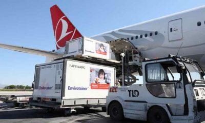 Çin'den gelen yeni parti Sinovac aşısı Türkiye'de