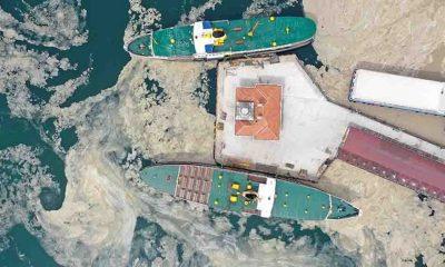 Dikkat çeken Marmara Denizi uyarısı: Bir an önce yasaklanmalı